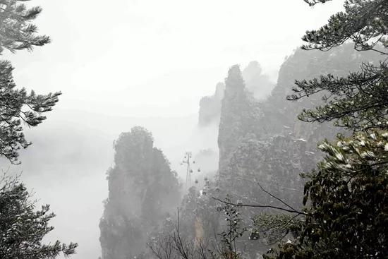 2月22日讯(通讯员 张洪涛)2月21日,受冷空气的影响,武陵源风景名胜区天子山纷纷扬扬地下起了农历狗年的第一场雪,给趁着长假尾声错峰出游的游人带来惊喜。  山脚下在下雨,半山腰就变成了下雪。索道沿线云雾弥漫,山峰若隐若现,云雾时而涌动,时而静谧,矗立在云中的山峰犹如悬浮起来一般。呼呼的风,夹杂着雪花,洋洋洒洒,漫天飞舞。  山顶上随风飘飞的雪花早已将山尖、树枝、地面、草丛、栏杆染白,游人们在雪地里或拍照或打雪仗,共享武陵源农历新年第一场大雪带来的快乐。  临近长假尾声,武陵源景区黄金周客流趋于平缓,错开客流高峰出行,到武陵源来一次冰雪之旅,不失为一种很好的选择。