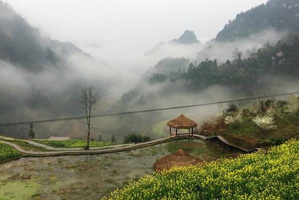 红网武陵源站